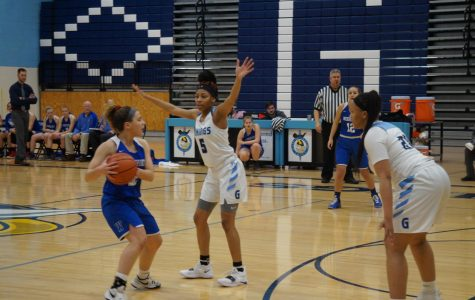 Lady Vikings reach new heights